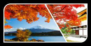 OSAKA – KOBE – KYOTO – PHÚ SĨ – TOKYO